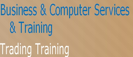 Business & Computer Services